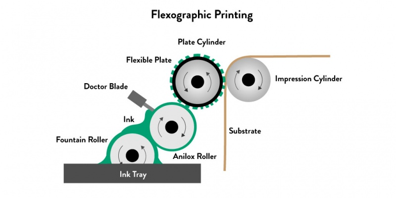 How Does Flexographic Printing Work Infographic
